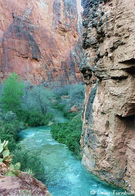 Image 4 of 5<br />Havasu Canyon below Mooney Falls